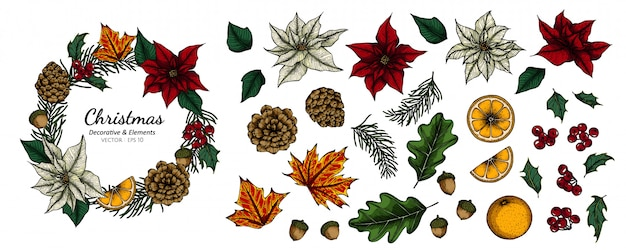 クリスマスの装飾的な花と葉の描画図のコレクションセット。