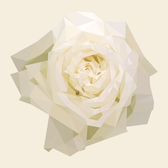 Геометрическая многоугольная белая роза