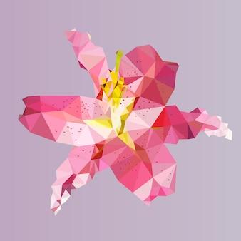 多角形のピンクのユリ