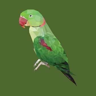 多角形の緑色のオウム、多角形の三角形の動物