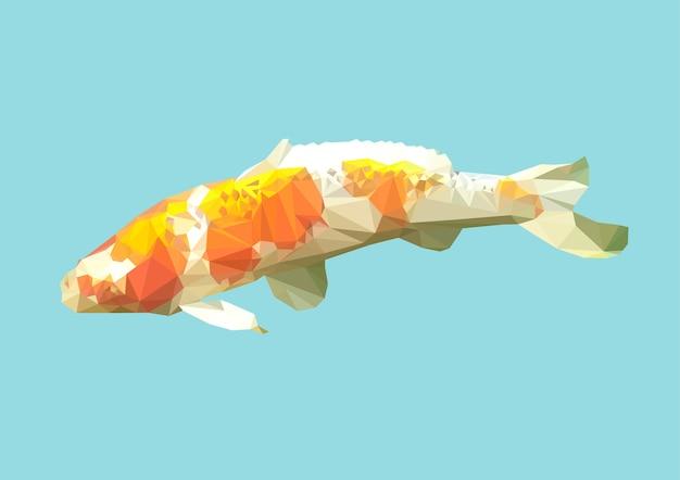 多角形の鯉やコイ魚