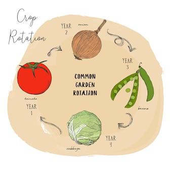 一般的な庭の回転