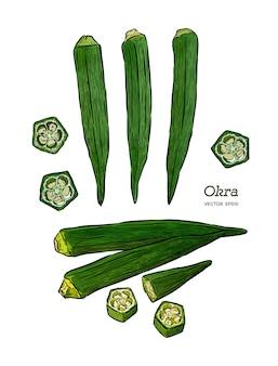 オクラ、手描きスケッチベクトル。野菜