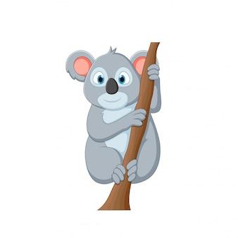 Векторная иллюстрация мультфильма коала