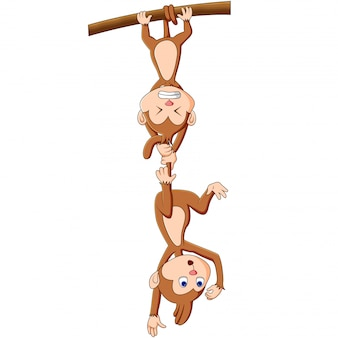 Мультфильм смешной обезьяны