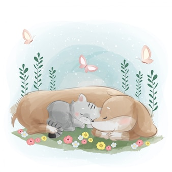 小さな子猫と一緒に寝ているソーセージ犬