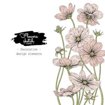 スケッチ花植物コレクション