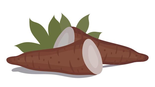 Свежий органический овощ