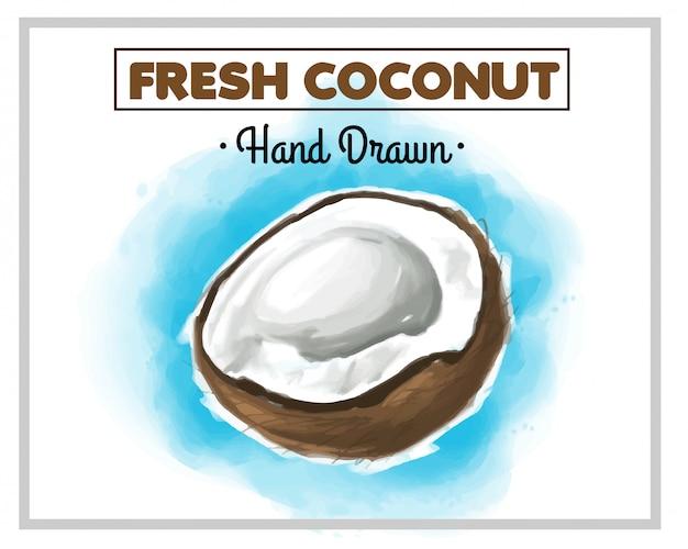 Свежий рисованный кокос с синим фоном позади