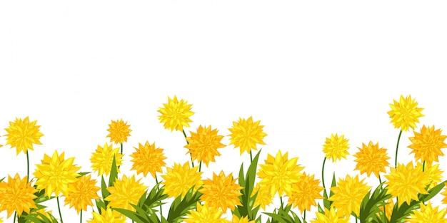 タンポポの花のロングフォーマットシームレスボーダー。