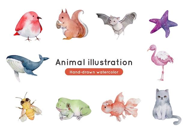 動物の手描き水彩イラスト