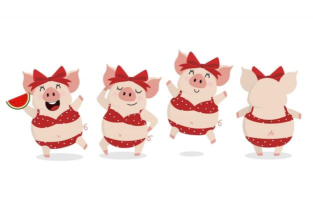 夏に赤いビキニでかわいい豚