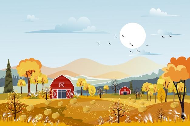 オレンジ色の空と秋のパノラマ風景ファームフィールド