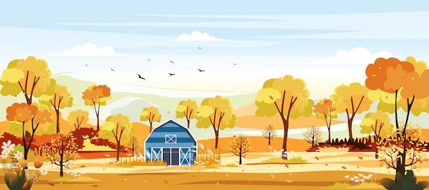 秋の田舎のパノラマ風景。黄色の葉の農場で中秋のパノラマ。秋の不思議の国の風景。