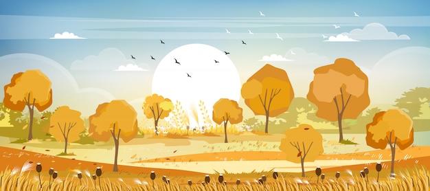 秋の田園風景のパノラマビュー