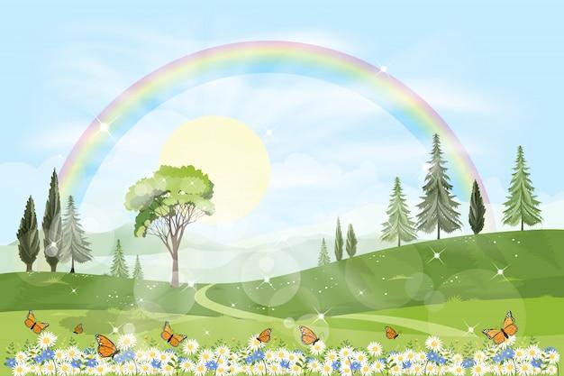 Панорама весеннего поля с радугой и солнцем, сияющим в лиственном лесу
