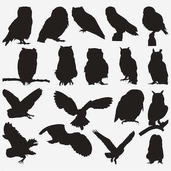 Силуэты совы