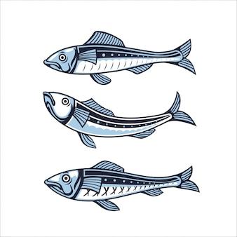 イワシのセット。魚のイラスト