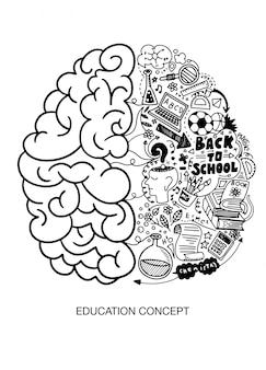 人間の脳、教育。