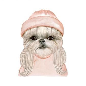 帽子の水彩イラストが愛らしいかわいい犬