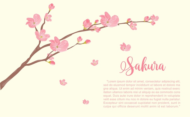 カードの桜