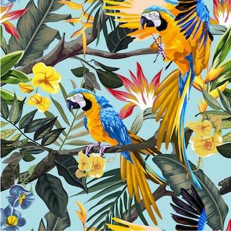 熱帯林のコンゴウインコのオウム