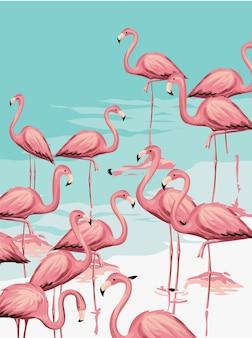 フラミンゴの群れのビーチのイラスト