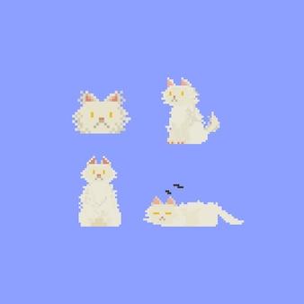 Пиксельная персидская кошка