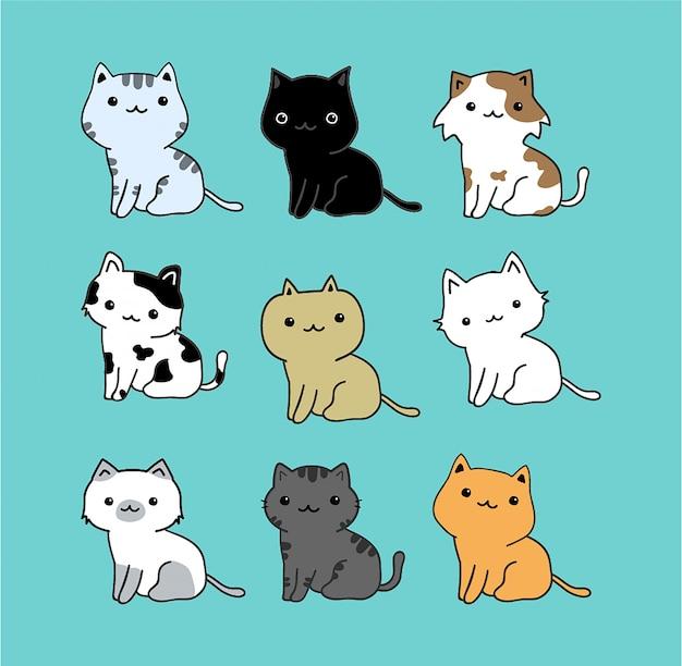 かわいい猫セット