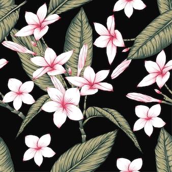 シームレスなパターンフランギパニの花は、黒の背景にあります。
