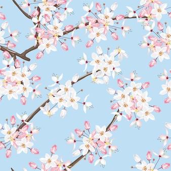 シームレスパターン白とピンクのカラパプルック花青い背景。