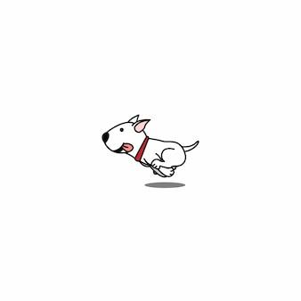かわいいブルテリア犬のランニング