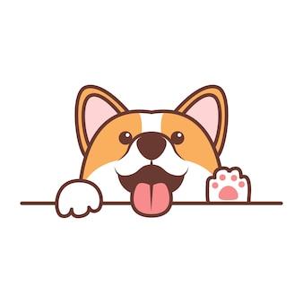 面白いコーギー犬が白い壁を越えて立ち上がる