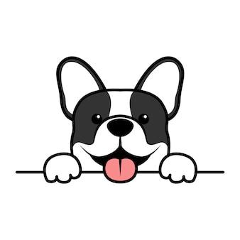 かわいいフレンチブルドッグの子犬が壁を越えて立ち上がる