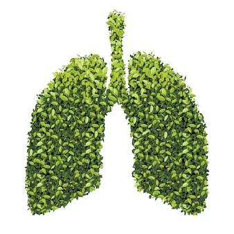緑の葉と肺