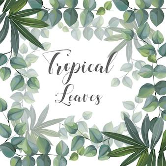 Тропические листья на раме для текстов векторная иллюстрация