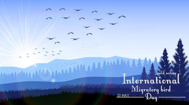 鳥の渡り日