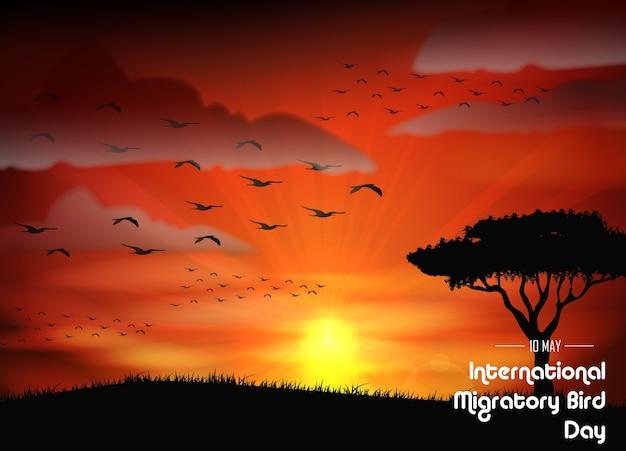 日没の背景にある鳥の渡り日