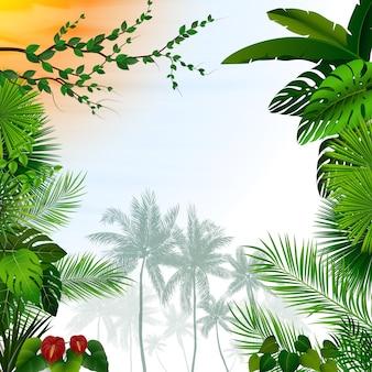 Тропический лес пейзаж с пальмами фон