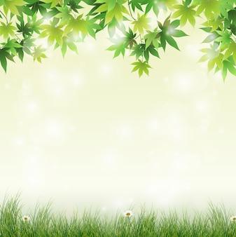 緑の葉の背景と春の牧草地