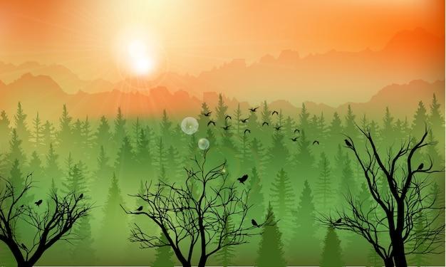 夕日の山の森の背景