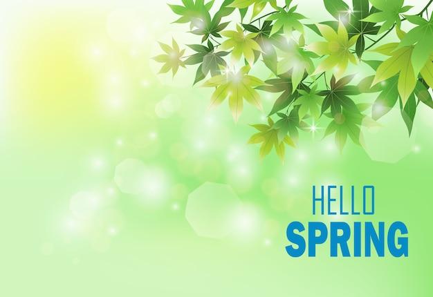 新鮮な緑の葉と春の背景