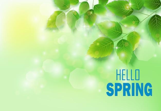 緑の草原に新鮮な緑の葉と春の背景