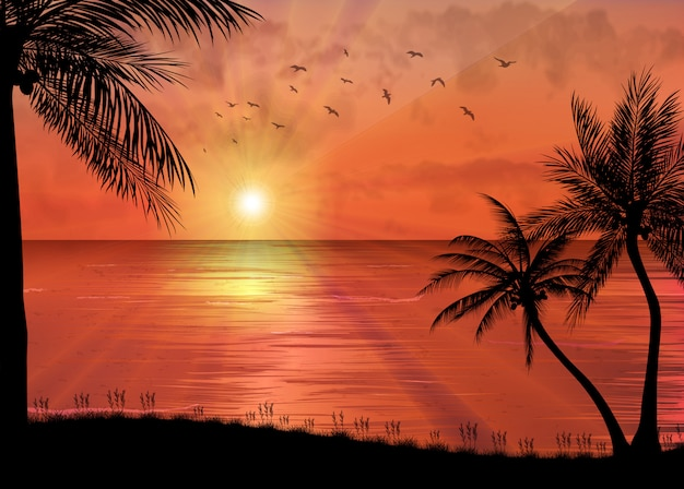 Тропический закат или восход солнца с пальмами