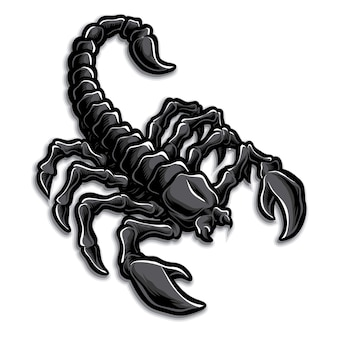Логотип скорпион