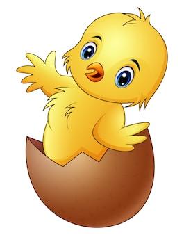 壊れた卵殻の漫画小さな赤ちゃんの鶏