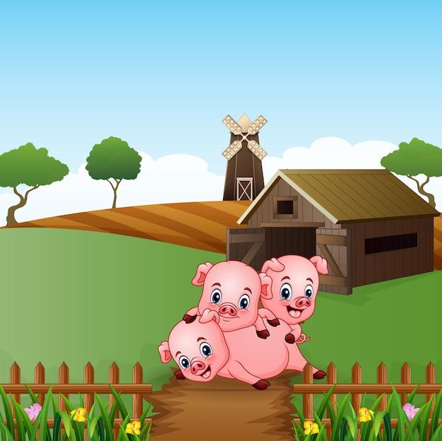 Свиньи играют перед фермой