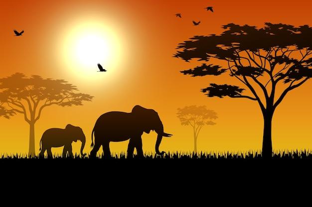 夕日の象のシルエット