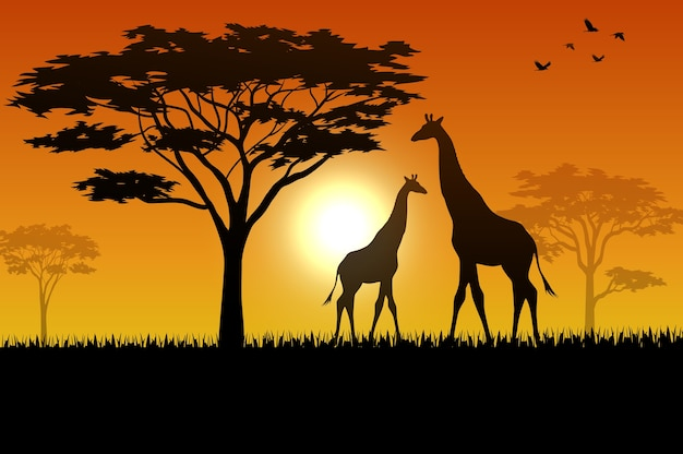サバナで日没の動物のシルエット