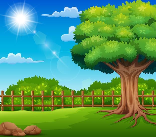 日光のある庭の自然の風景